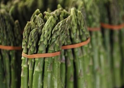 Asparagus CLose up