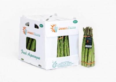 Asparagus ready to ship